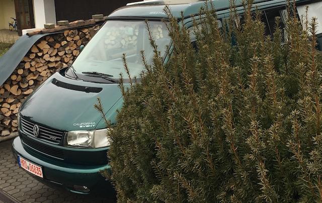 T4 California Westfalia Faltdach kaufen und ueberfuehren