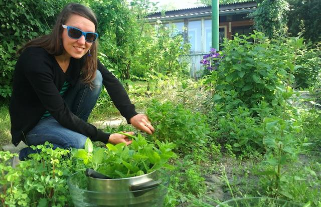 Zutaten für das Bullikochen kommen aus Deinem Garten