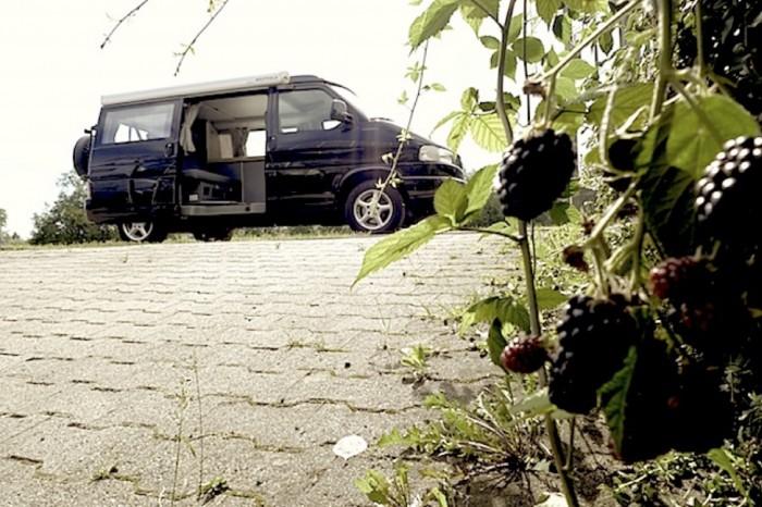 VW Bus T4 Syncro Klassiker sind eine Wertanlage