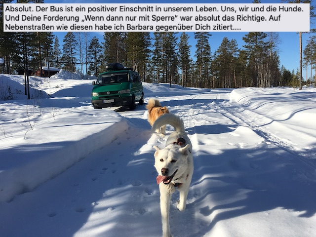 VW Bus Syncro Test mit Sperre in Norwegen BusChecker