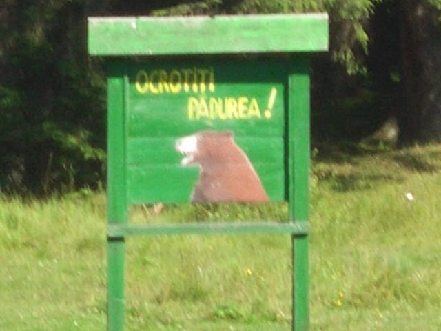 Schutzwald in Rumänien