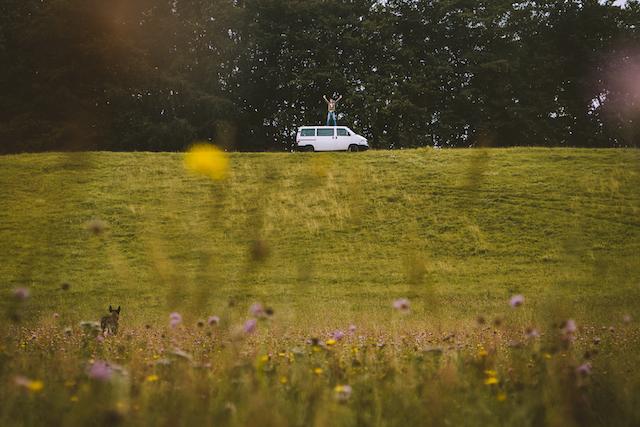 Hilfe ein Wolf VW Bus Syncro wild life ©DanPetermann BusChecker