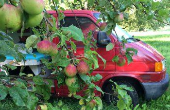 VW Bus T4 Camper Eigenausbau Erfahrungen