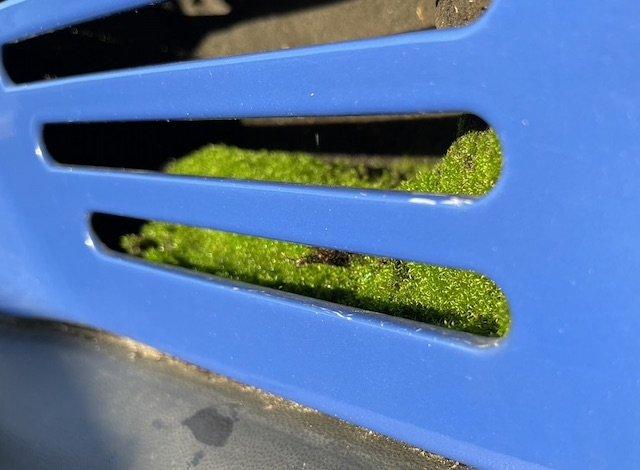 Partikelfilter VW Bus T4 Beratung BusChecker